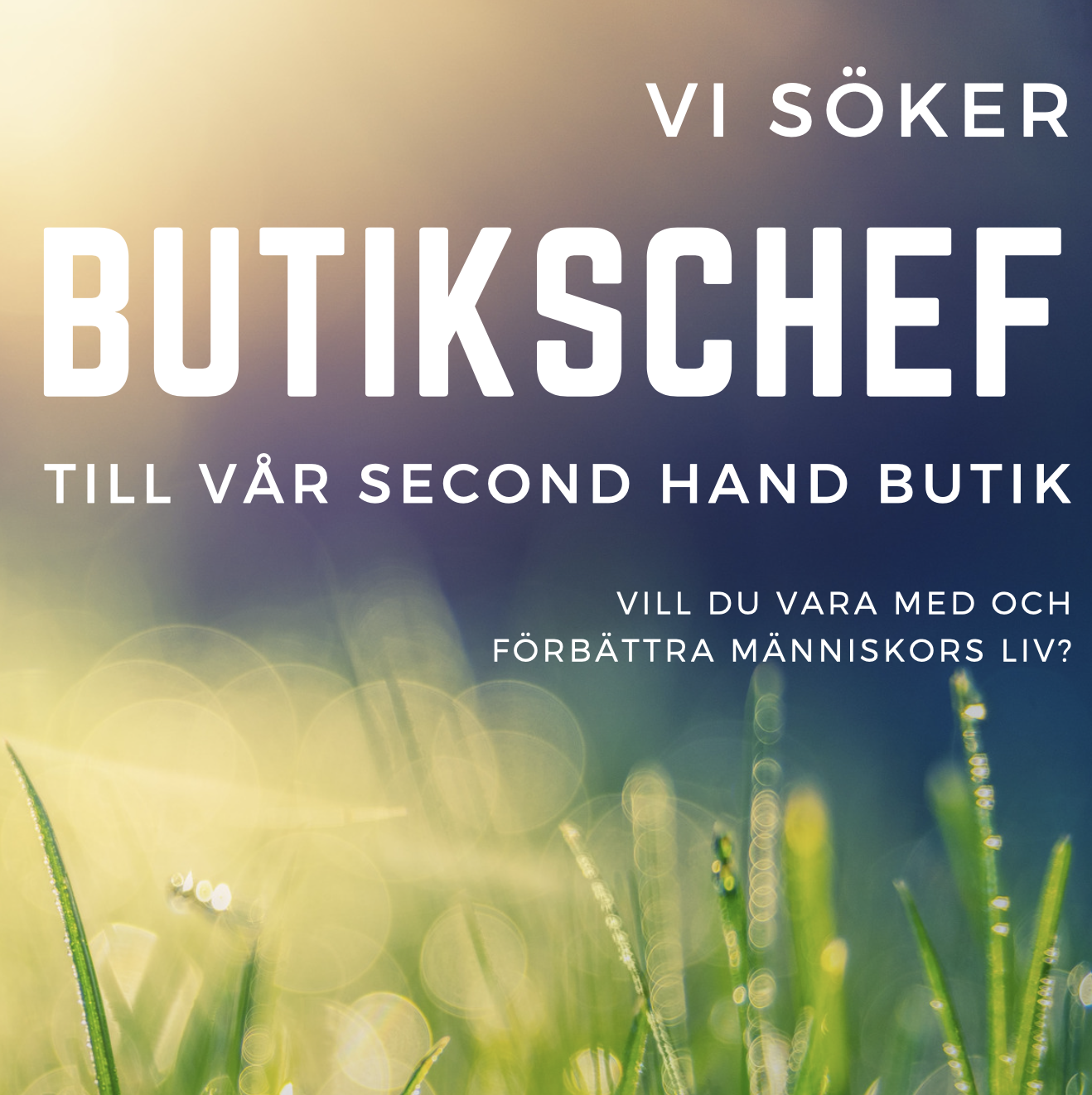 BUTIKSCHEF SECOND HAND